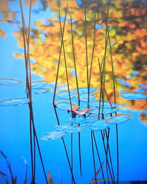 Full Frame Blue Lagoon Water Reflection