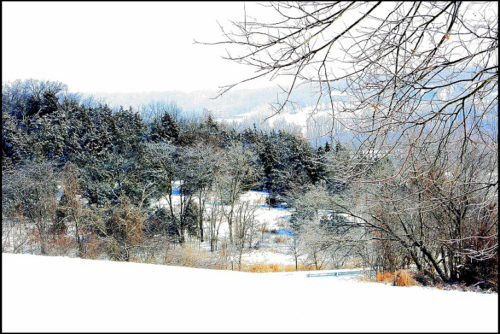 Quiescent-winter-card-photo-778x519Border