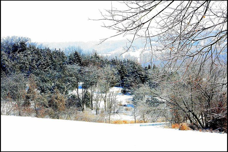 Quiescent-winter-card-photo-778x519Border